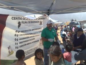 Se llevó a cabo vacunación de mascotas, atención médica, raspado de calles y limpieza de la zona